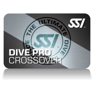 SSI Crossover course 2019