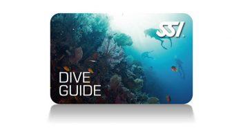 Dive Guide